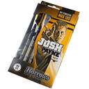 "Lotki dart Josh ""Max 180"" Payne 90% soft Harrows"